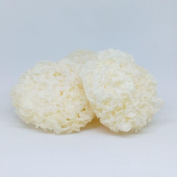 Nấm tuyết trắng khô (không bao bì)