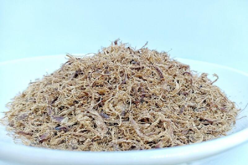 Dinh dưỡng từ chà bông nấm 1