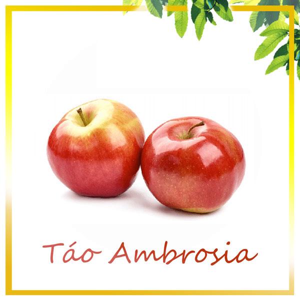 Táo Amprosia